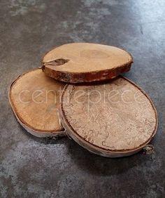 Log Slice Coaster