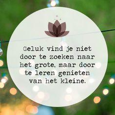 Genieten van het kleine www.info-zin.nl   www.facebook.com/info.zin