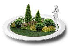 Хвойные композиции для вашего сада. Туя колоновидная, Туя колоновидная малая, Туя шаровидная, Туя шаровидная малая…