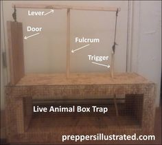 Learn how to build a homemade live animal box trap. http://preppersillustrated.com/755/how-to-make-a-live-trap-to-put-food-on-the-table-after-doomsday/