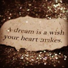 A dream is a wish your heart makes!