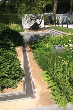 The+Laurent-Perrier+garden+designed+by+Luciano+Giubbilei+(which+won+Best+in+Show),+with+strong+structure+and+lovely+soft+planting.
