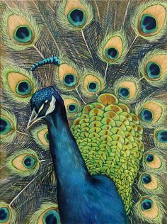 The peacock is a symbol of immortality because the ancients believed that the peacock had flesh that did not decay after death. As such, early Christian paintings and mosaics use peacock imagery, and peacock feathers can be used during the Easter season as church decorations. This symbol of immortality is also directly linked to Christ. The peacock naturally replaces his feathers annually; as such, the peacock is also a symbol of renewal.