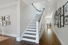 Staircase!!! Benjamin Moore - Abalone - pale gray wall color gray wall color pale gray entryway oak flooring stained wood risers black and white photography black frames family photos in hallway family photo groupins recessed lighting walnut stain walnut ebony stain custom stained flooring white oak flooring