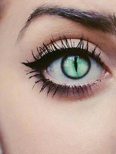 Would make awesome cat eyes lenses green love it halloween makeup fashion style Cool Contacts, Cat Eye Contacts, Halloween Contacts, Colored Contacts, Halloween Makeup, Pretty Eyes, Cool Eyes, Beautiful Eyes, Beautiful Images