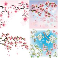 """Set of 4 vector cherry blossom backgrounds with tree branches and flowers for your spring/summer designs. Format: EPS stock vector clip art and illustrations. Free for download. Set name: """"Cherry blossoms"""" for Adobe Illustrator. Theme tags: flowers, trees, summer, nature,…"""