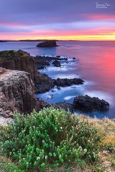 ~~Everything Zen ~ Minnamurra, Illawarra region, NSW, Australia by SoniaMphotography~~