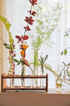 Using old test tubes as vases...