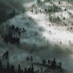 """Desa Cemoro Lawang, Taman Nasional Bromo Tengger Semeru, Jawa Timur. Photo by @kamerahitam #livefolkindonesia - More info about Photo location, Camera…"""