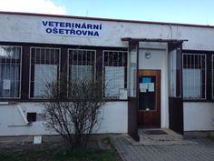 Y también en mi barrio había un consultorio veterinario.