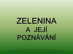 ZELENINA A JEJÍ POZNÁVÁNÍ Autorem materiálu a všech jeho částí, není-li uvedeno jinak, je Věra Fišerová. Dostupné z Metodického portálu ISSN:>