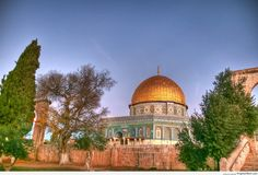 Masjid-Qubbat-as-Sakhrah-Dome-of-the-Rock-Mosque-From-Behind-Trees-at-Dawn-Al-Quds-Jerusalem-Palestine-
