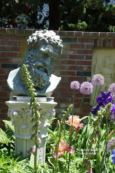 Hercules watched over his blooming Iris and Allium.