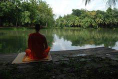 STUDY: Mindfulness meditation eases chronic low back pain. Wayne Dyer, Chronic Lower Back Pain, Nova Era, Spiritual Teachers, Art Memes, Mindfulness Meditation, Mindfulness Exercises, Morning Meditation, Tarot Reading