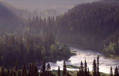Kitka river in Oulanka National Park in Kuusamo, Finnish Lapland