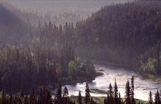 Kitka river in Oulanka National Park in Kuusamo, Finnish Lapland