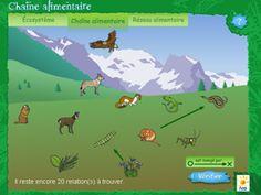Espace Elèves | Le site de la Fondation La main à la pâte  ANIMATIONS