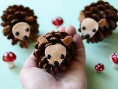 cbcparentspineconehedgehogs1 | by kirstenreese
