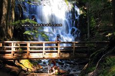Ramona Falls Trail is open for hiking, only when a foot bridge is placed over Sandy River during snow free season (May to October). Ramona Falls, Hiking Trails, River, Adventure, Places, Fairytail, Adventure Nursery, Rivers, Fairy Tales