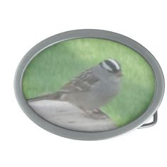 White Crowned Sparrow Oval Belt Buckles by Natural View