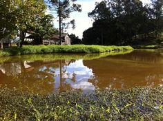 """Sítio dos Benassi"" III - Boa Vista do Sul/RS Brasil (by @luccks with iPhone4)"