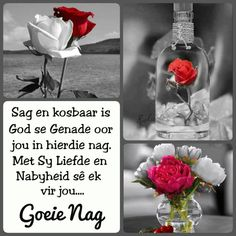 Good Night Wishes, Good Night Sweet Dreams, African Dessert, Evening Greetings, Afrikaanse Quotes, Goeie Nag, Angel Prayers, Goeie More, Night Quotes
