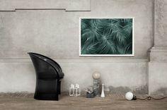 Art print Feathers