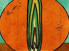 'Frühling' von Dirk h. Wendt bei artflakes.com als Poster oder Kunstdruck $19.41