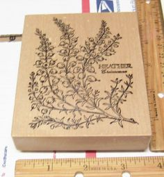 HEATHER ERICACEAE BOTANICAL FLORAL K-031 Rubber Stamp   #PSX #RUBBERSTAMP