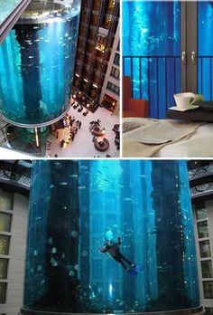 AquaDom- world's largest cylindrical aquarium