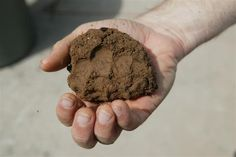 Soil is formed from very fine particles, such as silicates of aluminum, iron and magnesium. Description from mspilusoslearningcenter.blogspot.it. I searched for this on bing.com/images