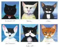 Robs Cats - Rob Hain
