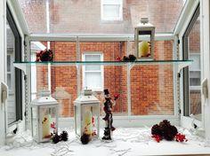 Winter garden window Garden Windows, Winter Garden, Tis The Season, Terraced Garden