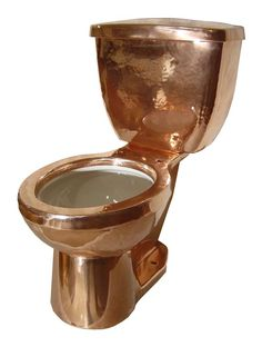 Copper Toilet?! Are you kidding me? Its in my guest bathroom - problem?