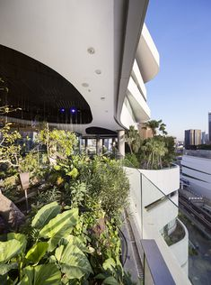 Architecture and interior design for a shopping mall in Bangkok, Thailand New York Landscape, Landscape Design, Glass Walkway, Best Commercials, Crystal Design, Office Interior Design, Plant Design, Shopping Center, Urban Design
