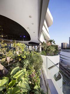 New York Landscape, Landscape Design, Glass Walkway, Best Commercials, Crystal Design, Office Interior Design, Plant Design, Shopping Center, Urban Design
