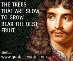 Wisdom quotes - The trees that are slow to grow bear the best fruit.