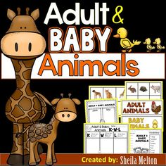 Adult and Baby Animals Who doesn't love baby animals? Your kids will love matching the adult and baby animals with these Adult and Baby Animal Sorting Pictures and Activities! This is a great addition to your Adult and Baby Animals curriculum and will add Baby Animals Pictures, Baby Pictures, Funny Animals, Cute Animals, Zoo Animals, Animal Worksheets, Animal Activities, Kindergarten Classroom, Classroom Ideas
