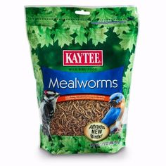 Kaytee Mealworms high energy treatAn important source of food for baby birds. Hedgehog Food, Meal Worms, World Birds, Wild Bird Food, High Protein Recipes, Chickens Backyard, Bird Species, Best Diets, Cat Food