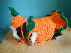 Guinea pig  Sweater , Guinea pig clothes, Pumpkin Costume for Guinea pig, Tiny Pet Outfit