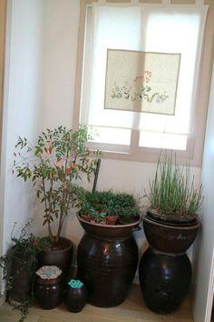 Korean traditional style indoor garden #항아리 #HangAri Cafe Interior, Kitchen Interior, Interior Design Living Room, Living Room Decor, Bedroom Decor, Indoor Garden, Indoor Plants, Vases, Korean Traditional