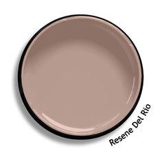 Resene Delta Grey is a formal grey, sandy and solemn. From the Resene col. Colour Pallette, Colour Schemes, Colour Chart, Color Combinations, Exterior Gray Paint, Exterior Colors, Wall Colors, House Colors, Paint Colours