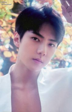 Sehun And Luhan, Bts And Exo, Chanyeol, Exo 2014, Photo Book, Ulzzang, Rapper, Seoul, Handsome
