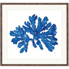 Indigo Coral Watercolour Print 3 to choose from (€110) ❤ liked on Polyvore featuring home, home decor, wall art, coral wall art, indigo home decor, coral home accessories, coral home decor and watercolor wall art