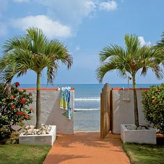 Gate to the Beach ~ Vieques, Puerto Rico