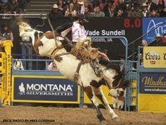 Wade Sundell rides lunatic fringe