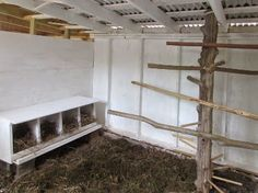 love this idea for the roosts-more like a tree in the middle of the coop-house.