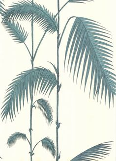 Cole & Son - New Contemporary - Palm Leaves 66-2012 HR