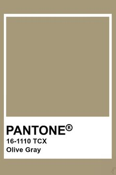Pantone Olive Gray Pantone Swatches, Color Swatches, Pantone Colour Palettes, Pantone Color, Colour Pallete, Colour Schemes, Paleta Pantone, Pantone Tcx, Colour Board