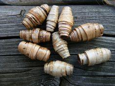 Birch Bark Beads                                                                                                                                                                                 More